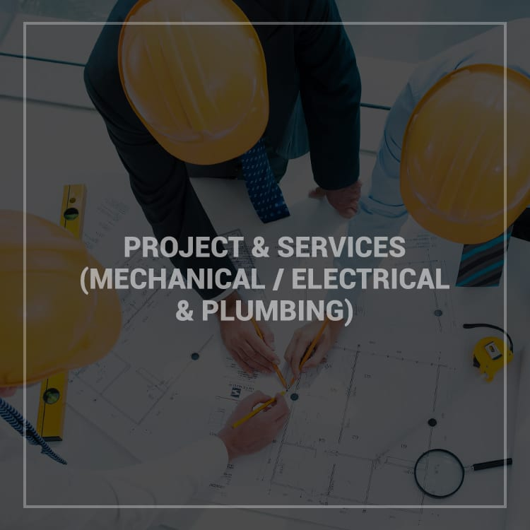 Projects & Services